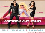 FunN2sHhWallPapers_Blogspot_com_Kambakkht_Ishq_Calender_Wallpapers_6